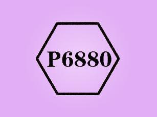 P6880