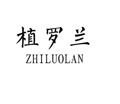 植罗兰+ZHILUOLAN