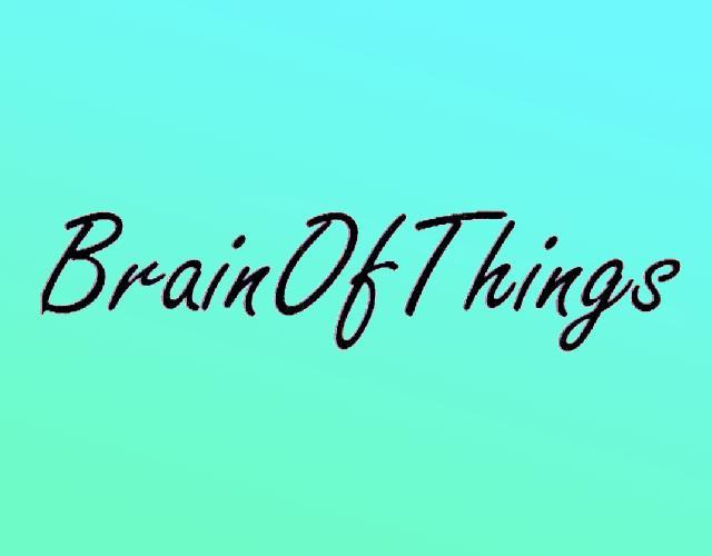 BRAINOFTHINGS