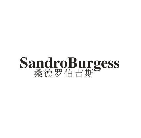 桑德罗伯吉斯 SANDROBURGESS
