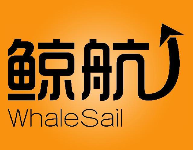 鲸航WHALESAIL