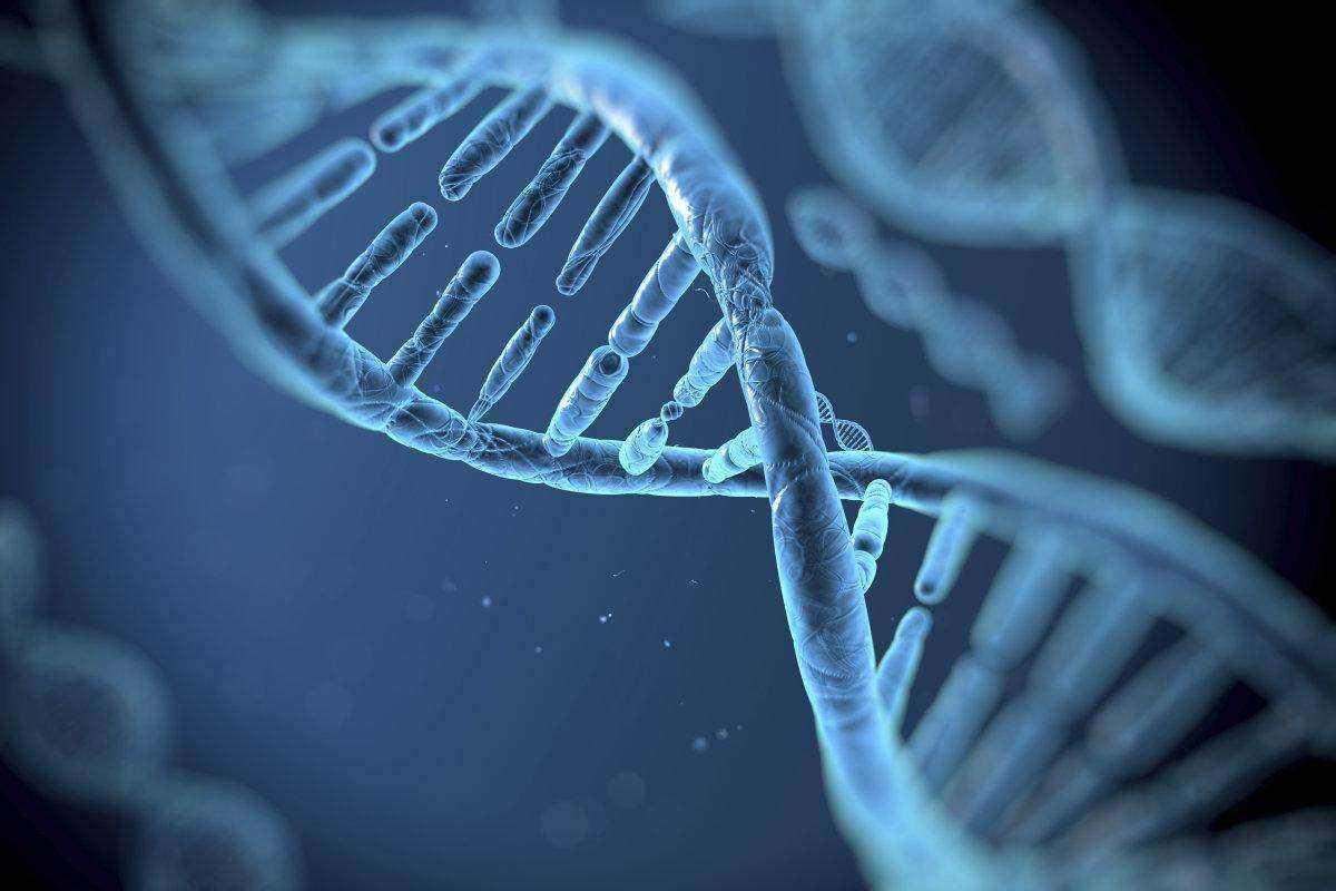 最高法知识产权法庭宣判首例生物基因技术药物专利授权行政案件