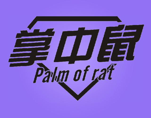 掌中鼠 PALM OF RAT
