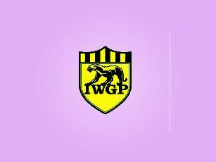 IWGP +图形