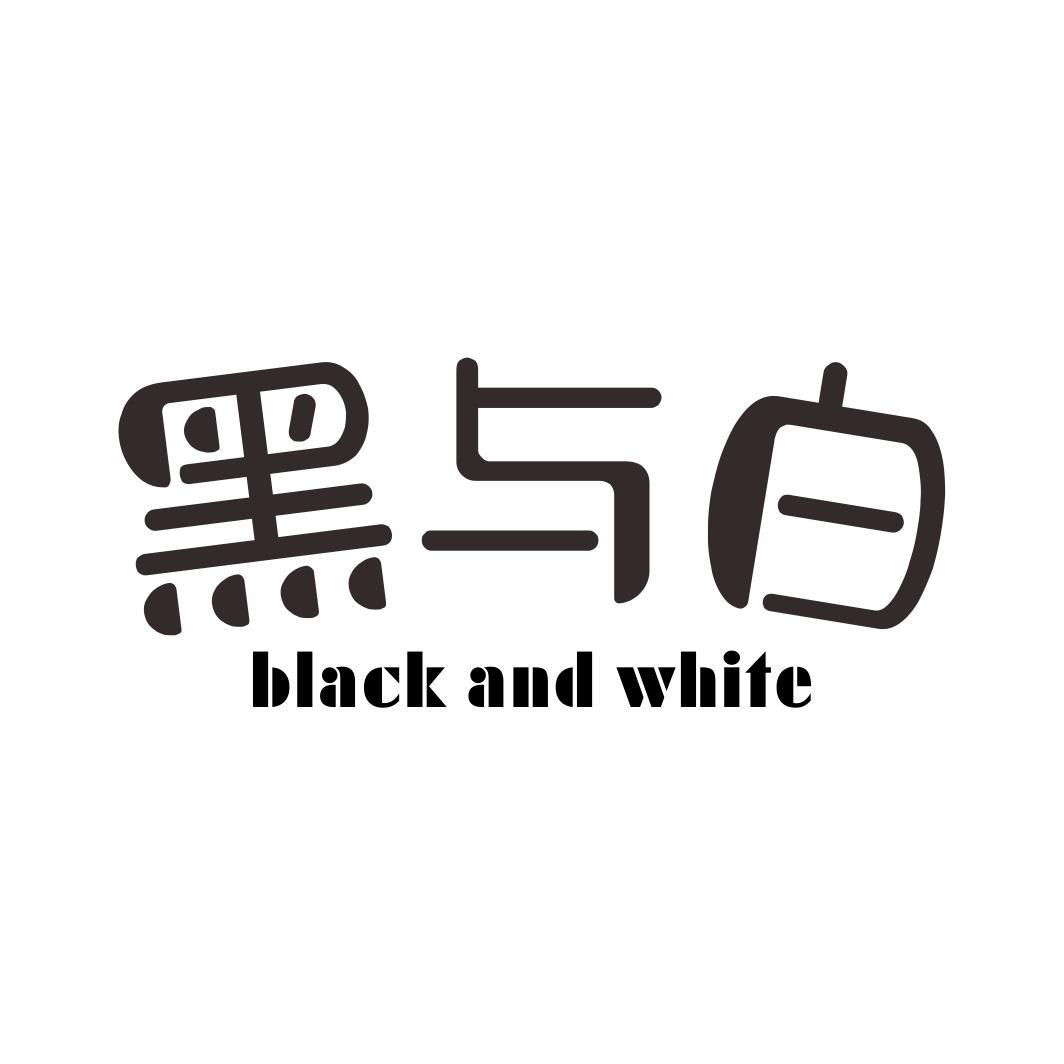 黑与白BLACK AND WHITE