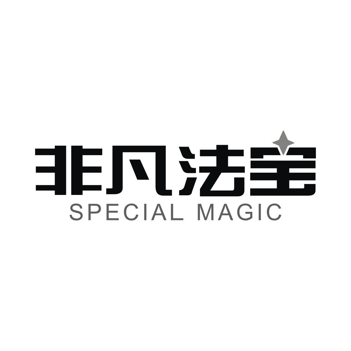 非凡法宝 SPECIAL MAGIC