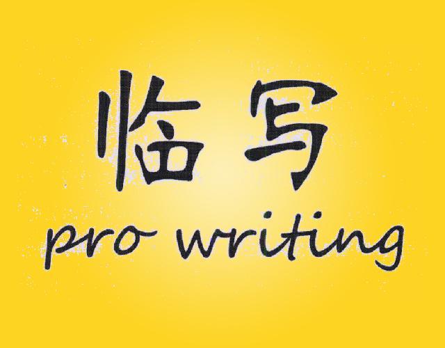 临写 PRO WRITING