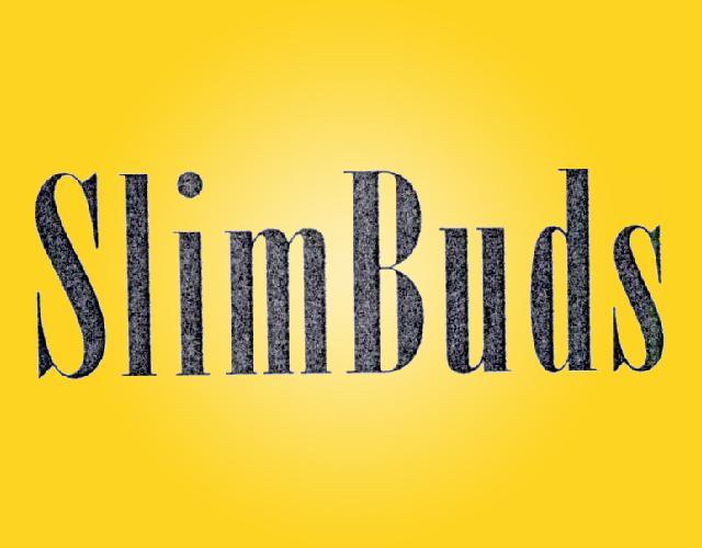 SlimBuds