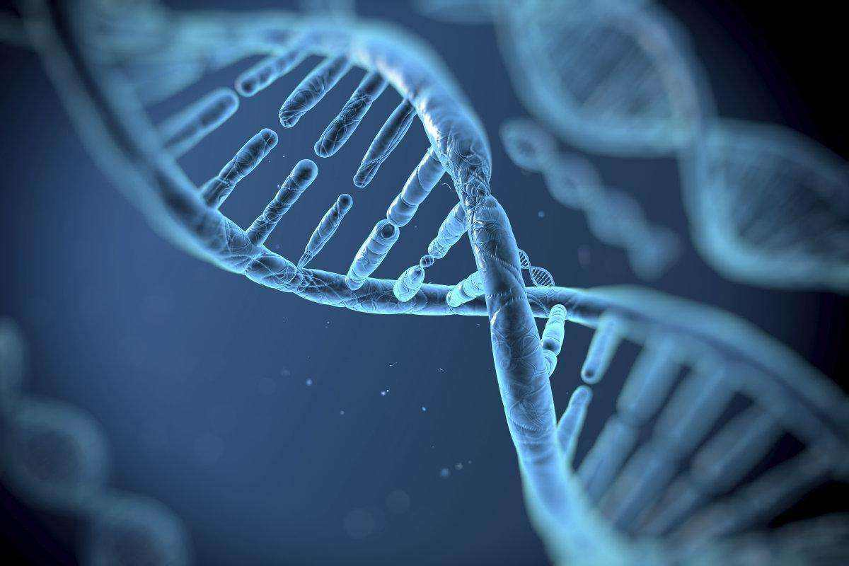 从基因编辑看人类基因技术的专利适格性问题