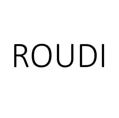 ROUDI