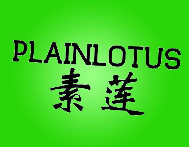 素莲 PLAINLOTUS