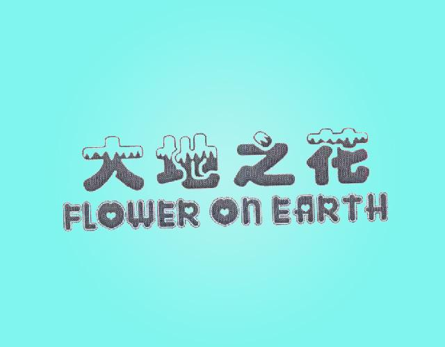 大地之花 FLOWER ON EARTH