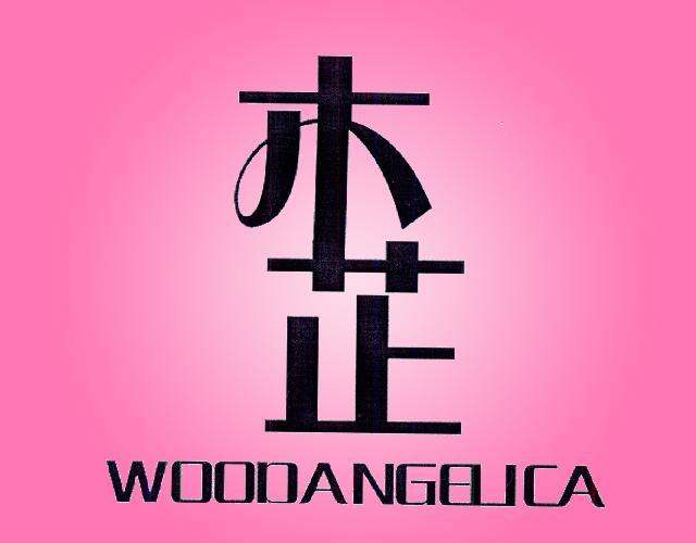 木芷 WOODANGELICA